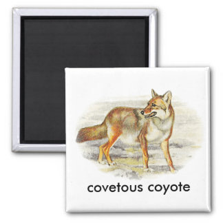covetous coyote 2 inch square magnet