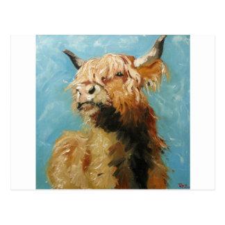 Cow#192 Postcard
