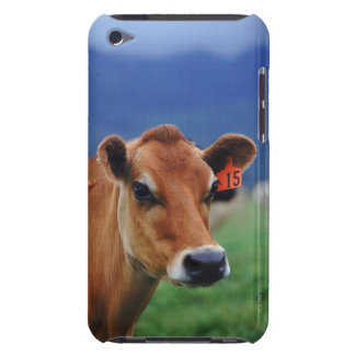 cow 2 barely there iPod cover