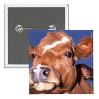 cow 2 button