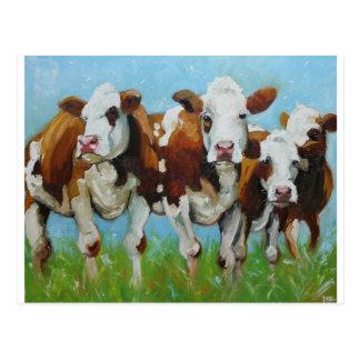 Cow#340 Tarjeta Postal