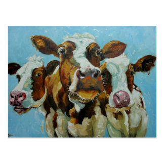 Cow#409 Postal