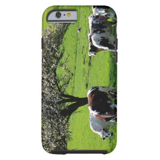 Cow among blooming trees in Normandy Tough iPhone 6 Case