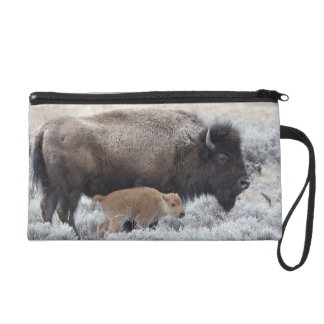 Cow and Calf Bison, Yellowstone 2 Wristlet Clutch