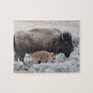 Cow and Calf Bison, Yellowstone 2 Jigsaw Puzzle