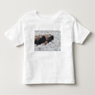 Cow and Calf Bison, Yellowstone Toddler T-shirt