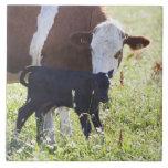 Cow and calf ceramic tile