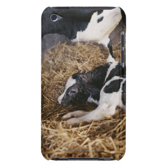 Cow and Calf in Hay Case-Mate iPod Touch Case