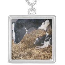 Cow and Calf in Hay Silver Plated Necklace