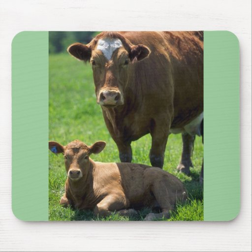 Cow And Calf Mouse Pad