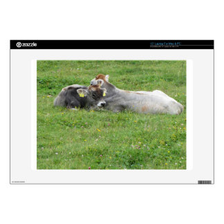 Cow and calf on a summer meadow laptop skins