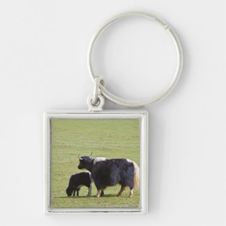 Cow and calf Yak, Lijiang Keychain