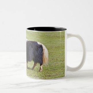 Cow and calf Yak, Lijiang Coffee Mug