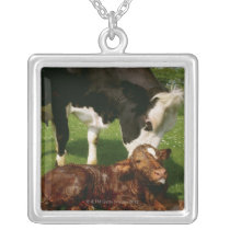 Cow and newborn calf silver plated necklace
