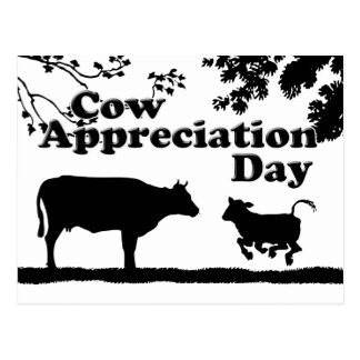 Cow Appreciation Day Postcard