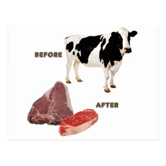 Cow Before and After Postcard