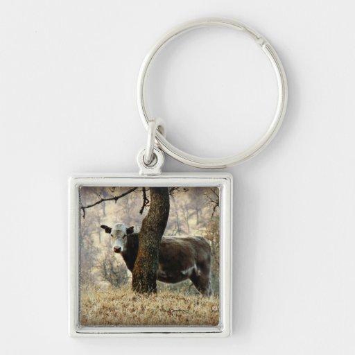 Cow behind Tree Keychain