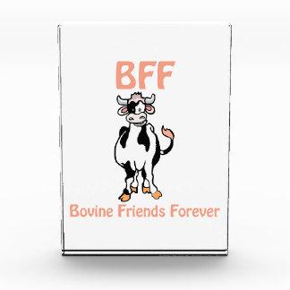 Cow BFF Award
