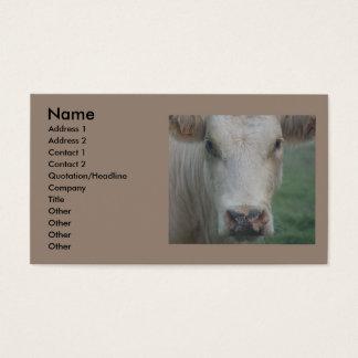 Cow Big Head Business Card