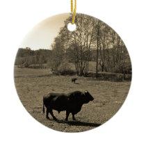 Cow, Black bull. Sepia Tone  Photo Ceramic Ornament