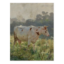 Cow by Emile Claus Postcard
