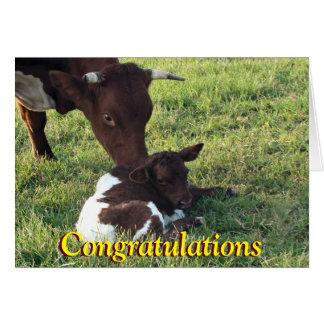 Cow&calf-personalizar de Pinzgauer cualquier Tarjeta De Felicitación