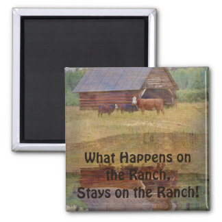 Cow, Calves, Shed and Pasture Cattle Ranch Art Magnet