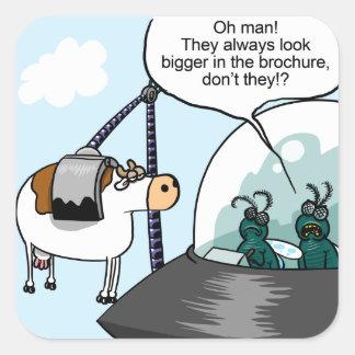 Cow Catalogues Square Sticker