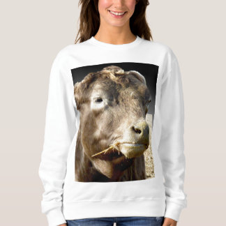 Cow Chewing Hay, Popout Art Ladies Sweatshirt