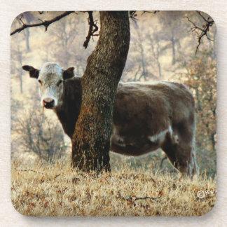 Cow Coasters