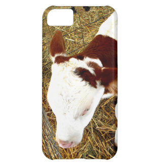 Cow Cover For iPhone 5C