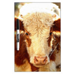 Cow Dry-Erase Whiteboards