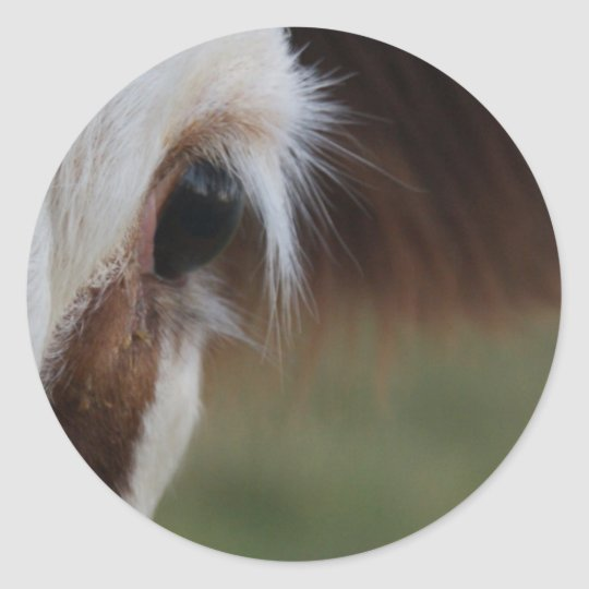 Cow Eye Classic Round Sticker