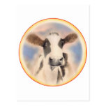 Cow Face Post Card