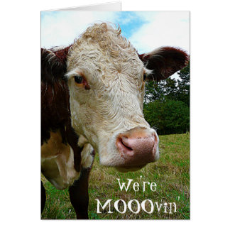 Cow Face We're Mooovin' Change of Address Notice Greeting Card