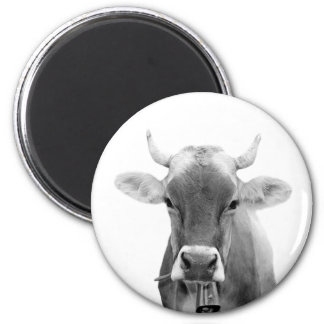 Cow farm animal portrait photo black and white magnet