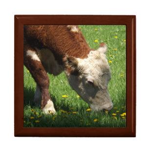 Cow Gift Box