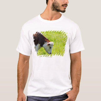 Cow grazing in a field, Loire Valley, France T-Shirt