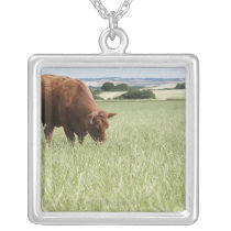 Cow grazing in meadow silver plated necklace