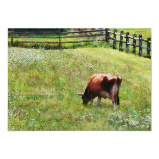 Cow Grazing in Pasture Card