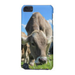 Cow Grazing iPod Tough 5g case iPod Touch (5th Generation) Case