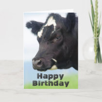 Cow Happy Birthday card