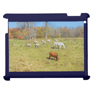 Cow Horse Sheep Grazing On Grass in Farm Field Cover For The iPad
