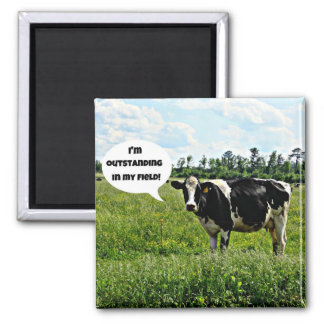Cow Humor 2 Inch Square Magnet