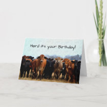 Cow Humor Birthday Card