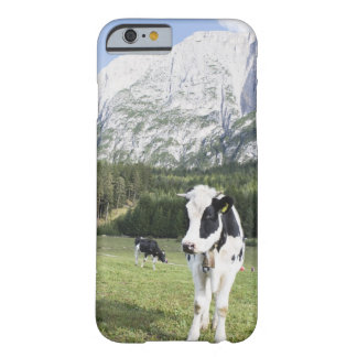 Cow In A Meadow, Fie Allo Sciliar, Alto Adige, Barely There iPhone 6 Case