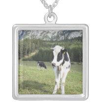 Cow In A Meadow, Fie Allo Sciliar, Alto Adige, Silver Plated Necklace
