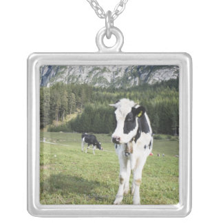 Cow In A Meadow, Fie Allo Sciliar, Alto Adige, Silver Plated Necklace