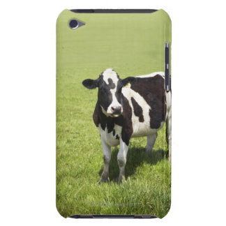 Cow in meadow iPod Case-Mate cases