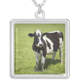 Cow in meadow square pendant necklace